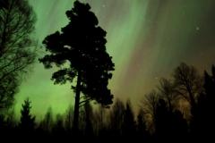 Aurora, northern light